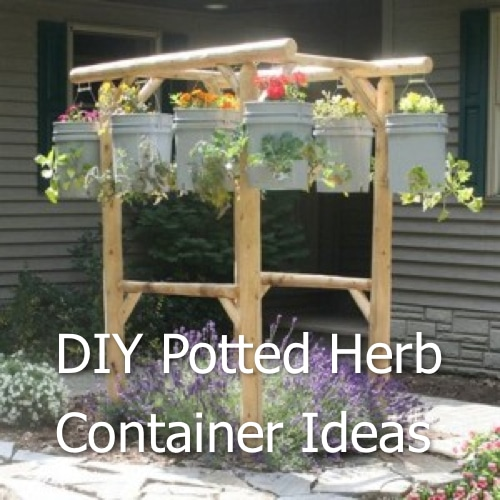 DIY Potted Herb Container Ideas Homestead & Survival