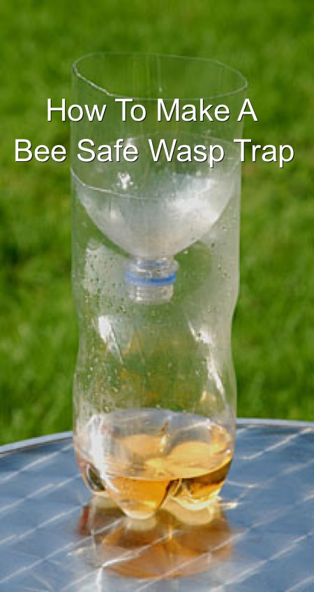 Bee Safe Wasp Catcher  Homestead  Survival