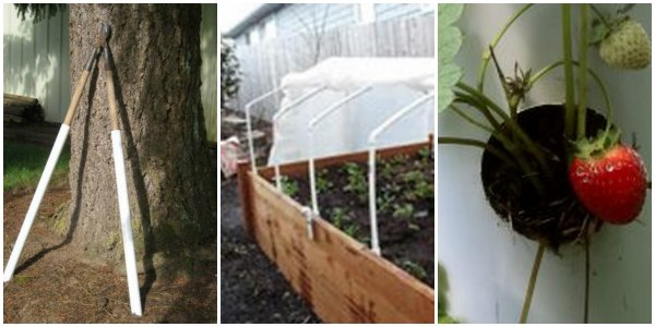 Simple Raised Garden Plans