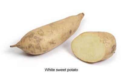 white sweet potato