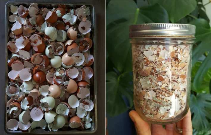 Colorful crushed eggshells on a tray, and in a jar. Some are very deep chocolate brown, light brown, pinkish, green and blue