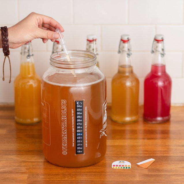 An example of a gallon crock, used for the batch method. The vessel does not have a spigot like a continuous brew crock. They're sampling the kombucha for flavor and pH, and keeping track of the temperature with an adhesive thermometer stuck on the side. The vessel is full of orange red tea.
