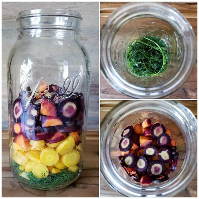 Three images of a 1/2 gallon mason jar. One shows a side view of the jar, half full of cut rainbow carrot rounds. The other two are looking down into the jar, one showing the fresh dill in the bottom of the jar, then carrots added in on top.