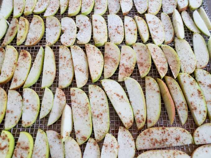 A close up image of the sliced apples neatly and evenly spaced on a drying rack. They are now dusted with cinnamon, some have more or less than others.