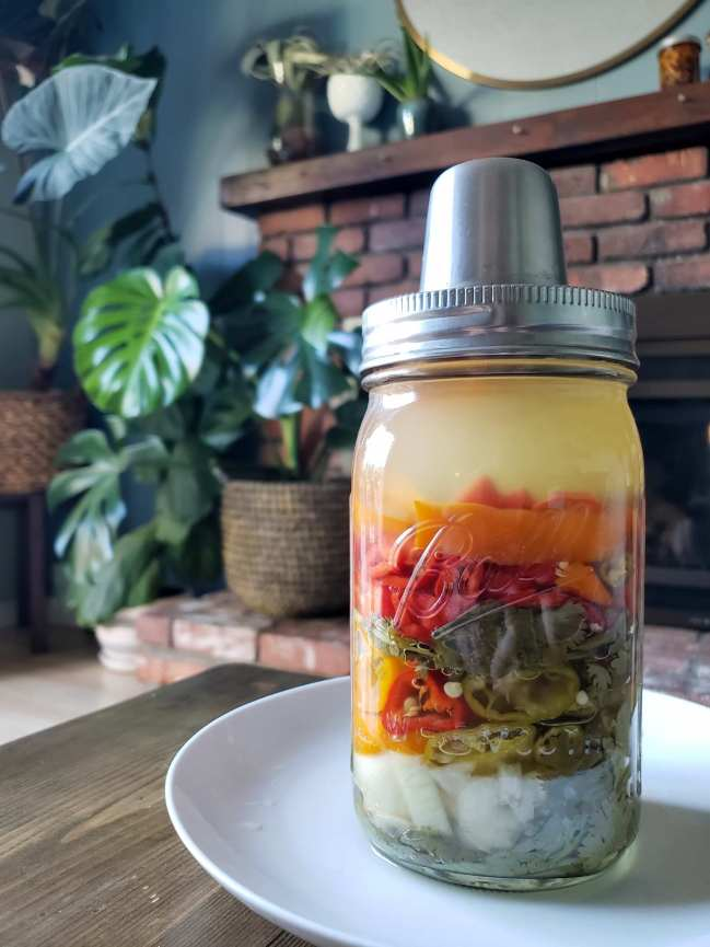 The jar full of chili peppers, cilantro, onions, and garlic is shown sitting on a white plate. The Kraut Source lid is still on top of the jar, showing that it is still fermenting. The ingredients inside have shrunk slightly, only filling the jar two thirds of the way now, and the clear salt water brine has now turned cloudy. All of these things are typical of fermenting foods. The background is a brick fireplace flanked on the left by houseplants such as monstera, fiddle leaf fig, and alocasia.