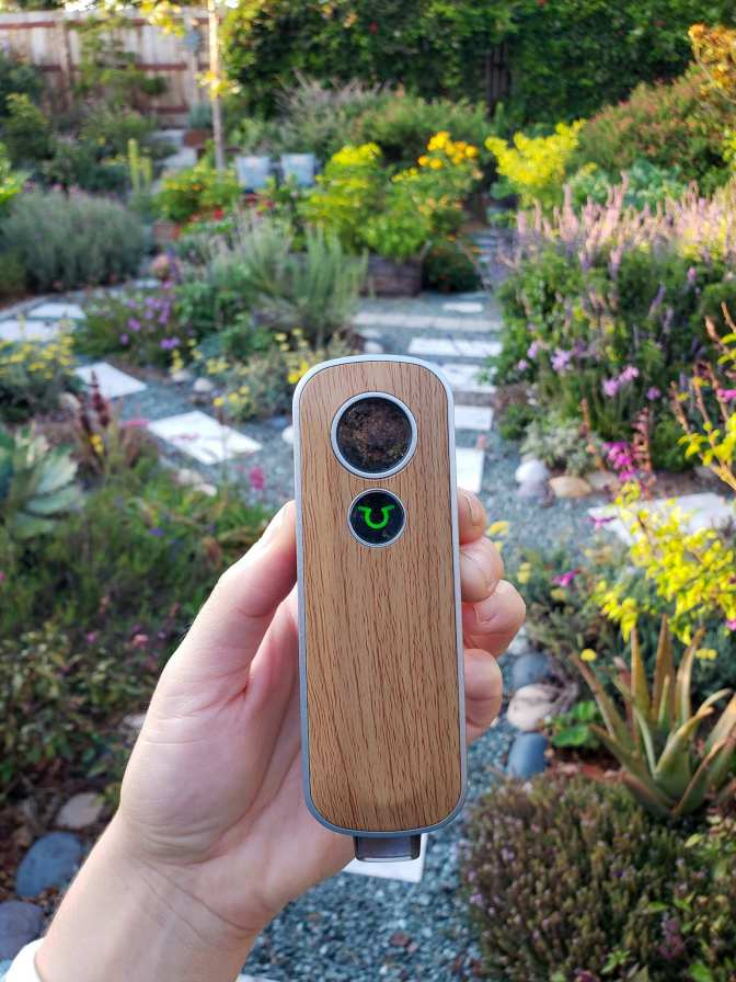 A hand is holding the Firefly 2+ vaporizer cantered in the image, the light is green, showing that the vaporizer is ready to use for inhalation. In the background is a front yard lined with gravel pathways, stone pavers, perennial plants of all types, raised garden beds with indistinguishable vegetable annuals. The color range from green to purple to red, pink, yellow, and orange.