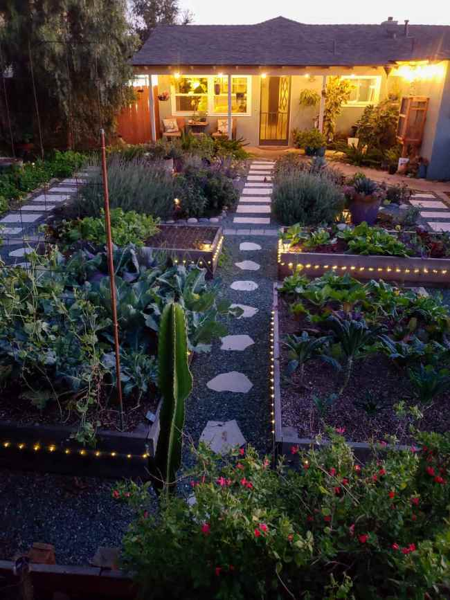 An image of the front yard garden facing the house. It is dusk and the string lights on the porch are lit. There are raised garden beds full of vegetables, islands lined with river rock that contain flowering perennial and annual plants, cacti, shrubs, trees, and vines. The pathways are landscaped with gravel and walkways lined with pavers and stone.
