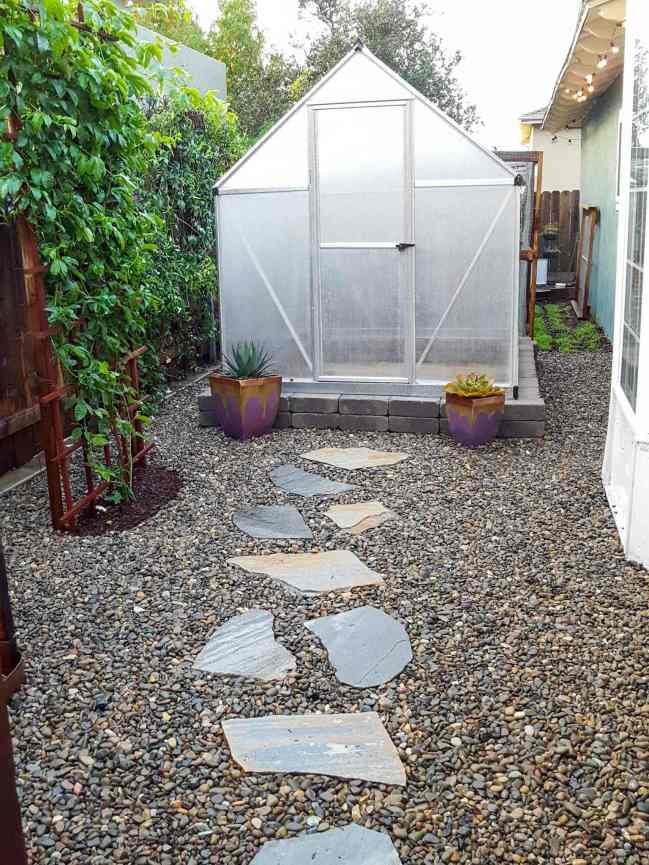 A photo showing the same side yard area that has been worked on and renovated as part of this tutorial. It looks like a brand new, clean, pretty space. The concrete block wall foundation is in place with a small 6x8' greenhouse kit on top, with two purple and gold pots with succulents around the greenhouse front door, and clean river rock covering all of the exposed ground. Green vines are one side of the greenhouse, and a house with string lights on the other.