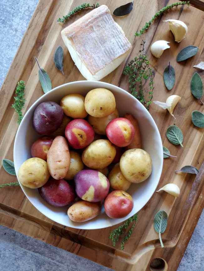 A white ceramic bowl filled with baby potatoes that range in color from gold to purple to red sits atop a wooden cutting board. Scattered about on the cutting board and around the bowl of potatoes lies pieces of fresh sage and thyme, cloves of garlic, and a square chunk of Taleggio cheese.