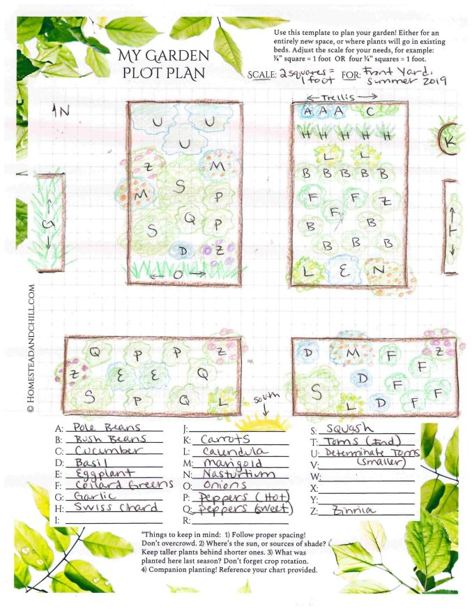 A garden plot plan that has been been completed. There are six garden beds that have been drawn on and colored with colored pencils. Each bed has multiple letters scattered throughout each one, spaced according to plan. Below the area that contains the drawings, there are 26 lines, each one starting with a letter of the alphabet, from A to Z. Most letters have a particular plant written into the blank line, this plot plant has pole beans for A, Onions for O, and Zinnias for Z to only name a few. Use the plot plan in conjunction with the companion planting guide to effectively plant your garden.