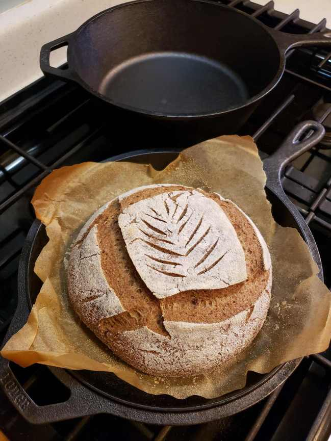 A gluten-free sourdough loaf has just finished baking in a cast iron combo cooker. The loaf is still sitting in the bottom portion of the combo cooker, it as been deeply scored in a square shape, with thinner light scores along the inside which resemble a plant grain pattern.