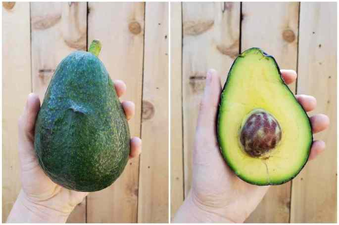 A two part image collage, the first image shows a hand holding a large Sir Prize avocado against a light cedar fence. The size of the fruit is larger than the palm of the hand. The second d image shows the same avocado after it has been cut in half, revealing the flesh to pit ratio inside. The flesh is greenish yellow with a small pit residing in the middle.