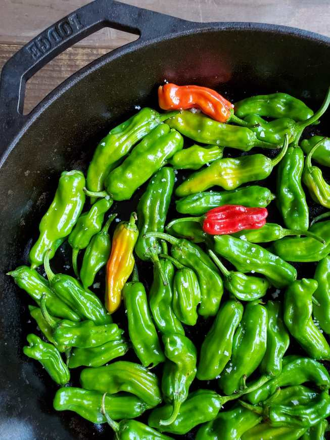 A close up image of the peppers inside the cast iron skillet before they begin to blister. Salt specks cling to the oiled peppers.