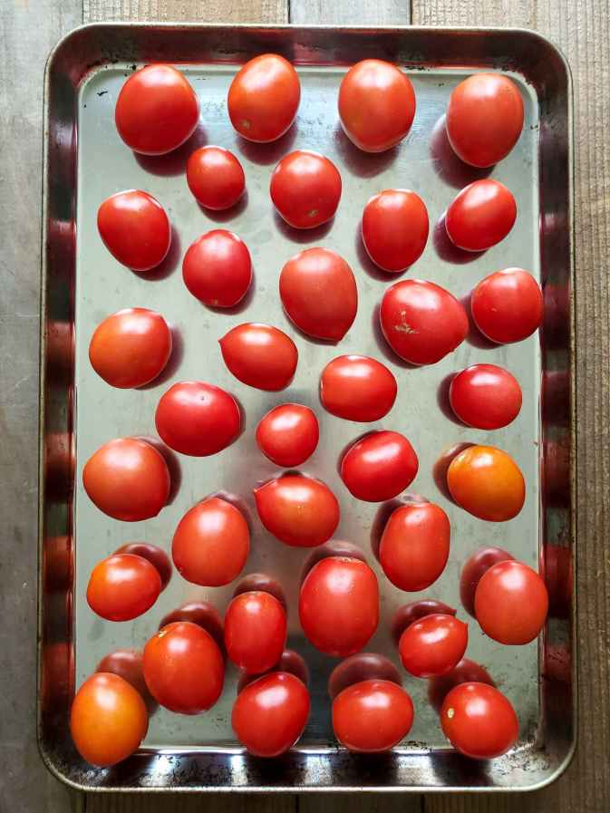 Roma type tomatoes line a baking sheet, they are spaced so that they do not touch each other. The tomatoes are a beautiful red color, each with slight sheen from the sun and reflection of the sheet.