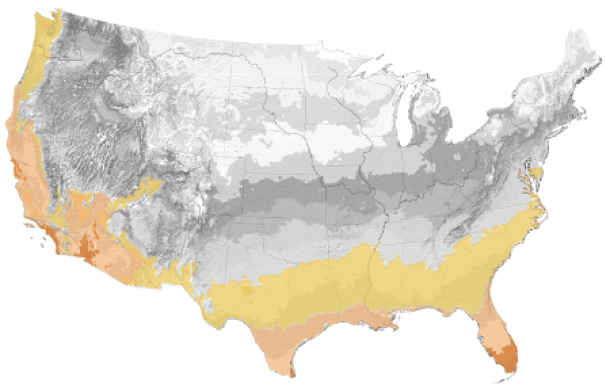 A diagram of the United States with hardiness zones 8-11 highlighted with orange, peach, and yellow. This takes up portions of the entire West Coast, South West, to the South, and up into the Carolinas.