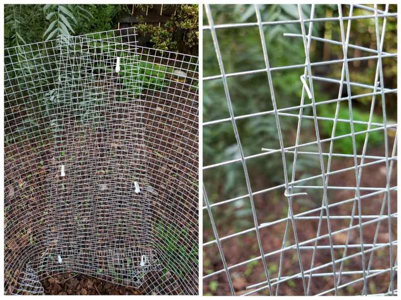 A two way image collage, the first image shows the ends of the hardware cloth cylinder fashioned together with zip ties from the top to the bottom about every 8 inches. The second image shows how the end of the hardware cloth can be bent to wrap around the other end of the cylinder (as the zip ties do) to make the homemade gopher basket even more sturdy.