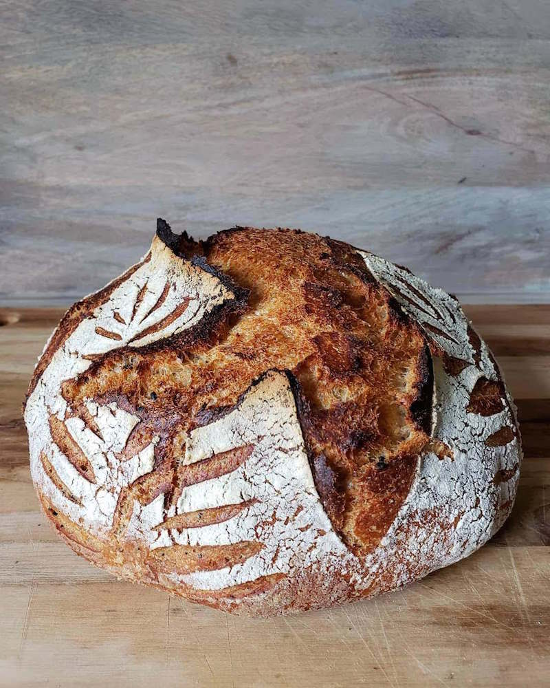 A loaf of crusty sourdough bread is shown. The center contains a deep score that has created a large ear whose edges are dark and crusty. Other score marks resemble that of a plant or stalk of wheat while some white flour remains encrusted on the outside of the loaf.