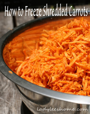 How to Freeze Shredded Carrots – Homestead Bloggers Network