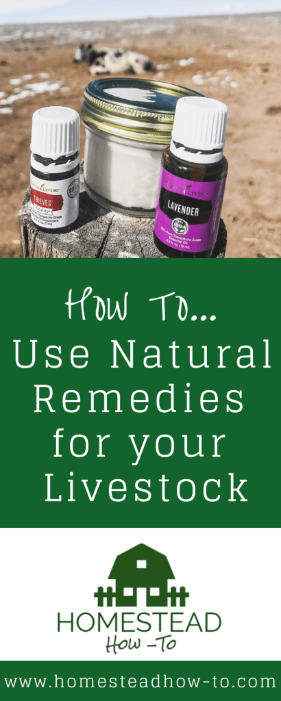 How to use natural remedies for your livestock (PIN)