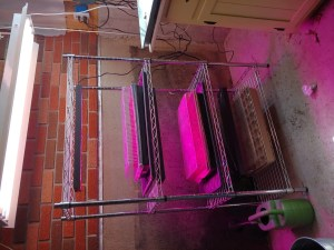 grow light stand with extra lighting above