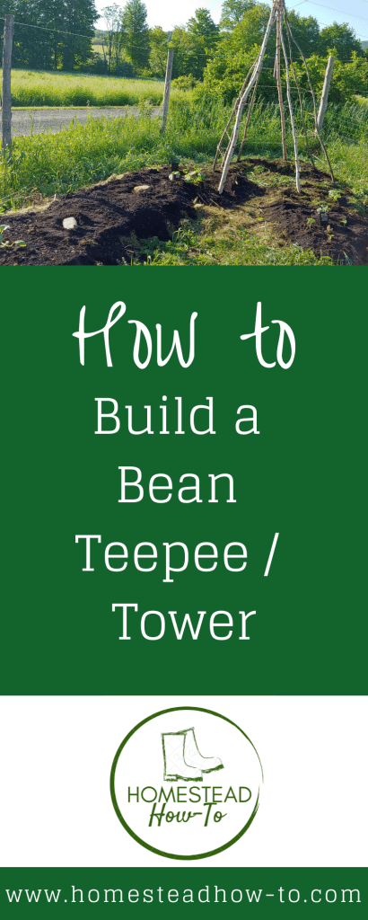 How to Build a Bean Teepee or Tower PIN