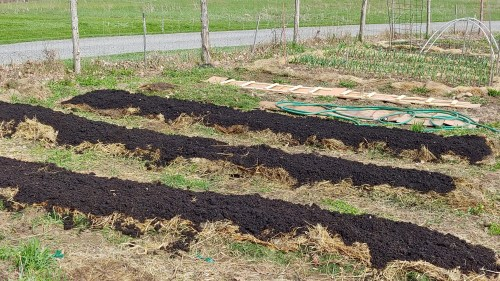 a no dig garden bed with a layer of compost