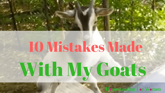 10 Mistakes Made with goats