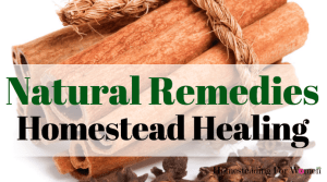 Natural Remedies 3 Herbs For Homestead Healing To Keep In Your First Aid Kit