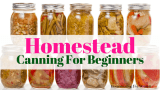 Homestead canning