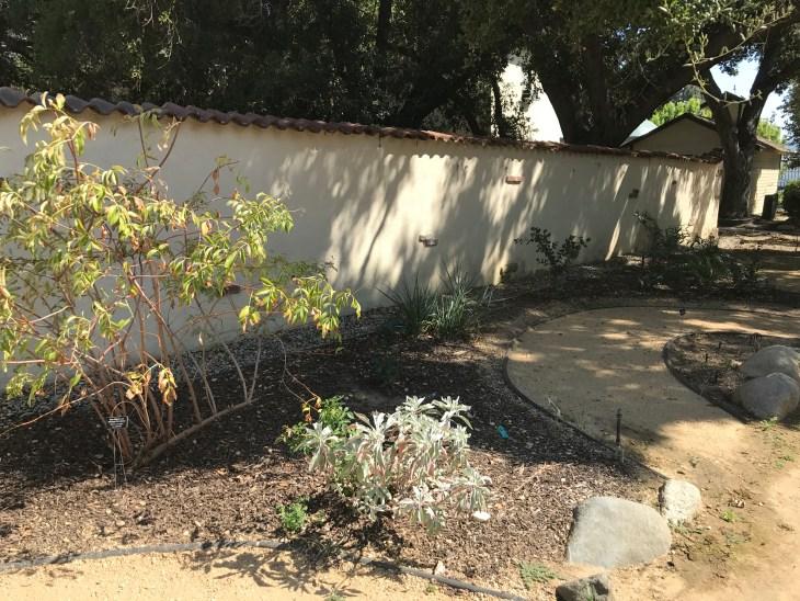 native garden whole