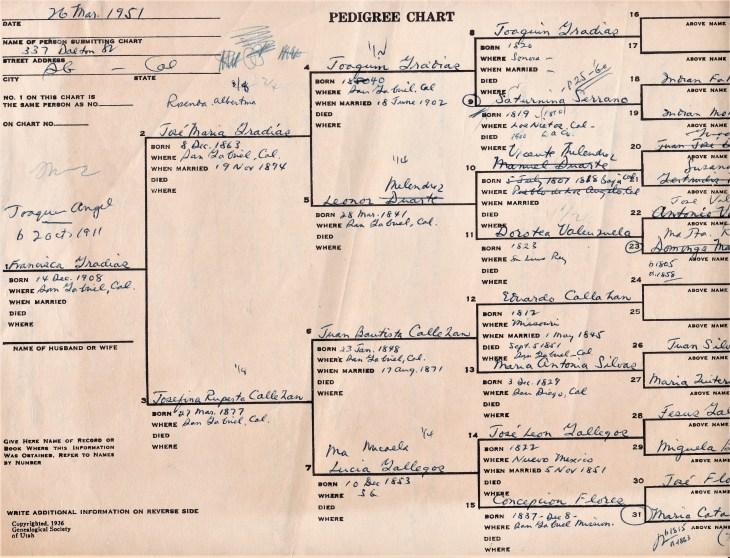 TW Temple II pedigree chart 26 Mar 1951