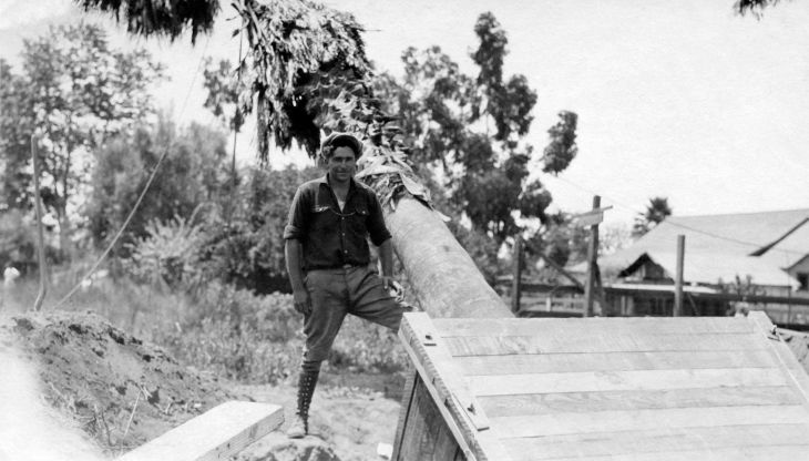 Worker Posed With Palm Tree At Removal In San Gabriel 2002.89.48