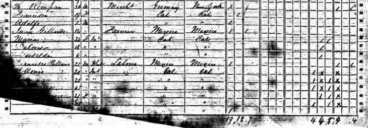 Rimpau 1852 census