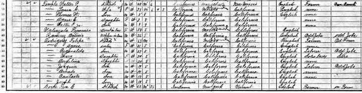 1910 census Temples