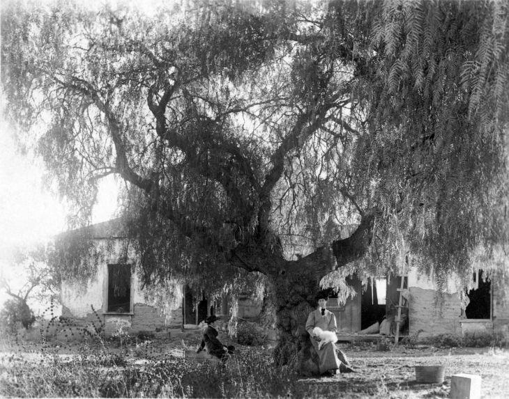 San Gabriel Woman and Boy Under Pepper Tree 2014.620.1.1