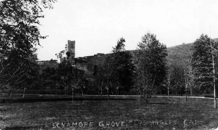 19055 View of Sycamore Grove 2016.74.1.3