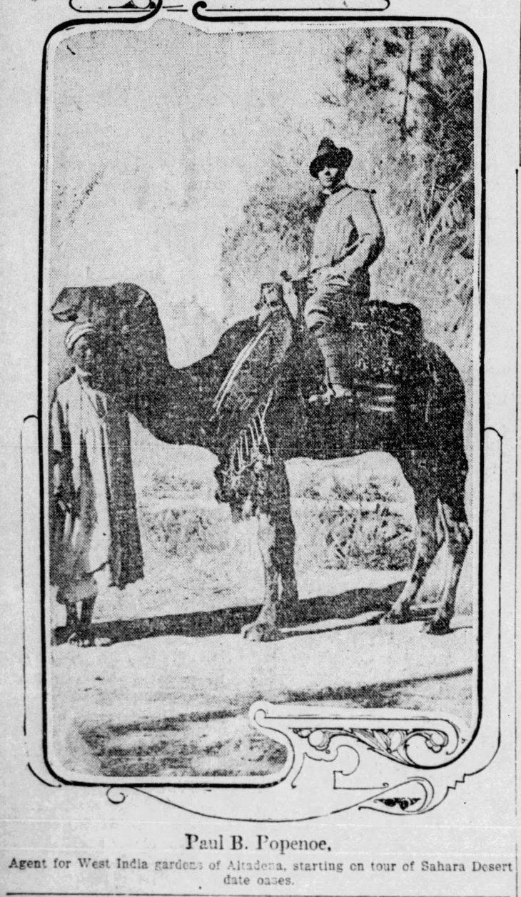 Popenoe photo Africa date The_Los_Angeles_Times_Sun__Jun_9__1912_