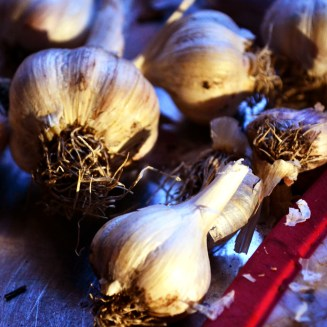 use up sprouting bulbs of garlic