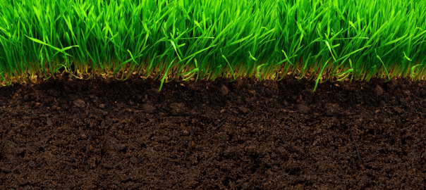 Why Do We Fall Wallpaper Preparing Your Garden Soil Homestead Resource