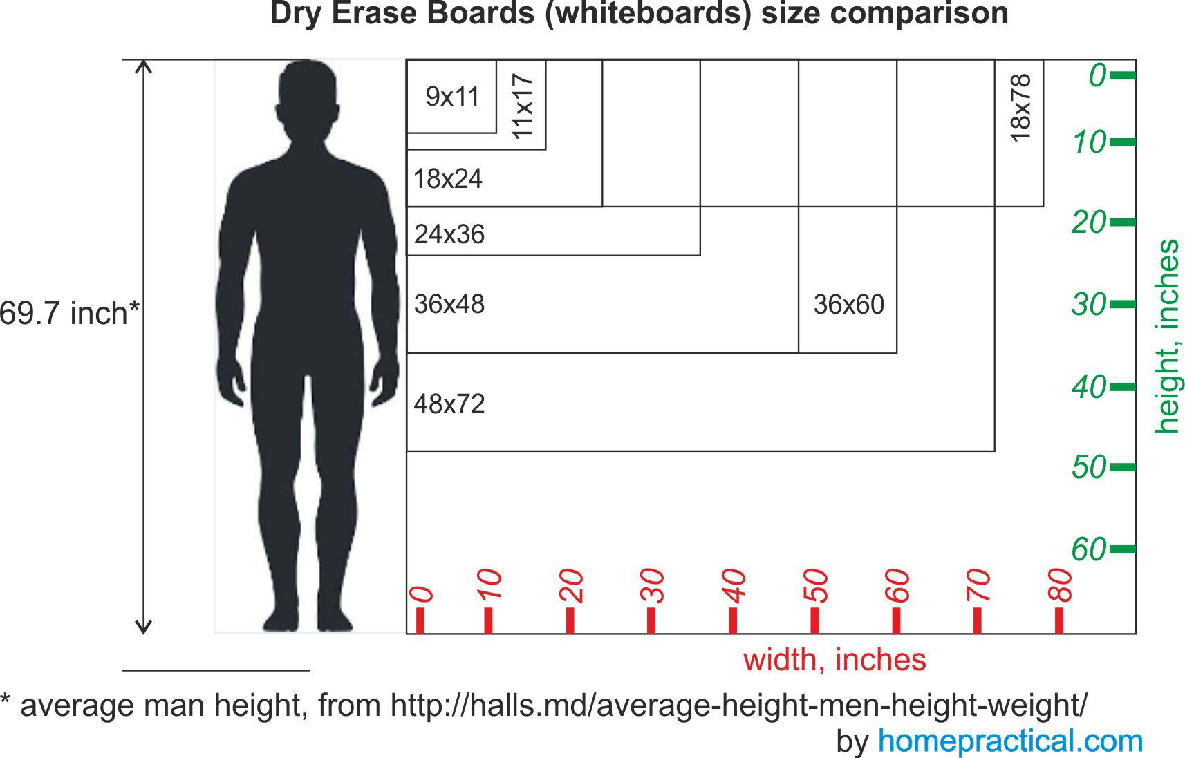 12 best dry erase