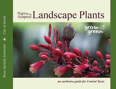 A Free Guide To Central Texas Landscape Plants Home