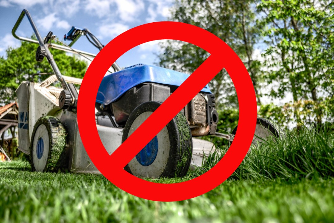 Don't use gas mowers