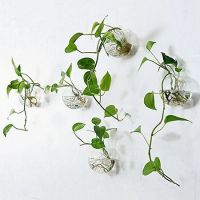+41 Details About Rustic Hanging Shelves Decorative Wall Shelf For Flowers Plan 6