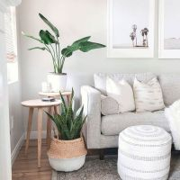 √33 Cool DIY Indoor Plant Shelves To Enhance Your Room Beautiful - a Brief Outline