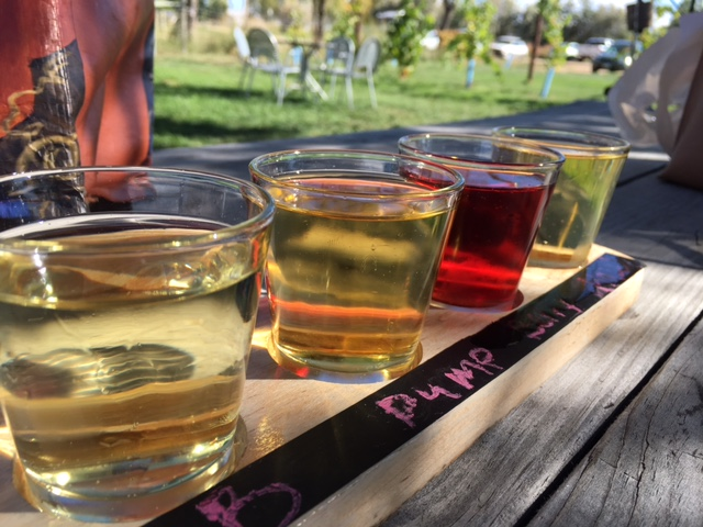 Wild Cider in Firestone, CO