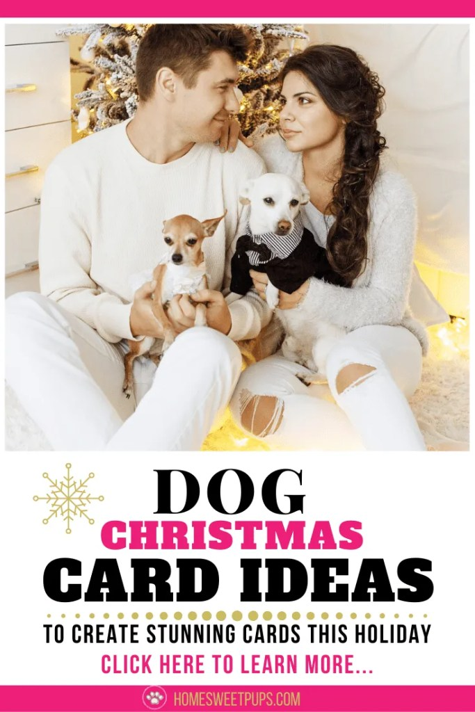 dog christmas card ideas for your next holiday card of you and your loved one with the dog.