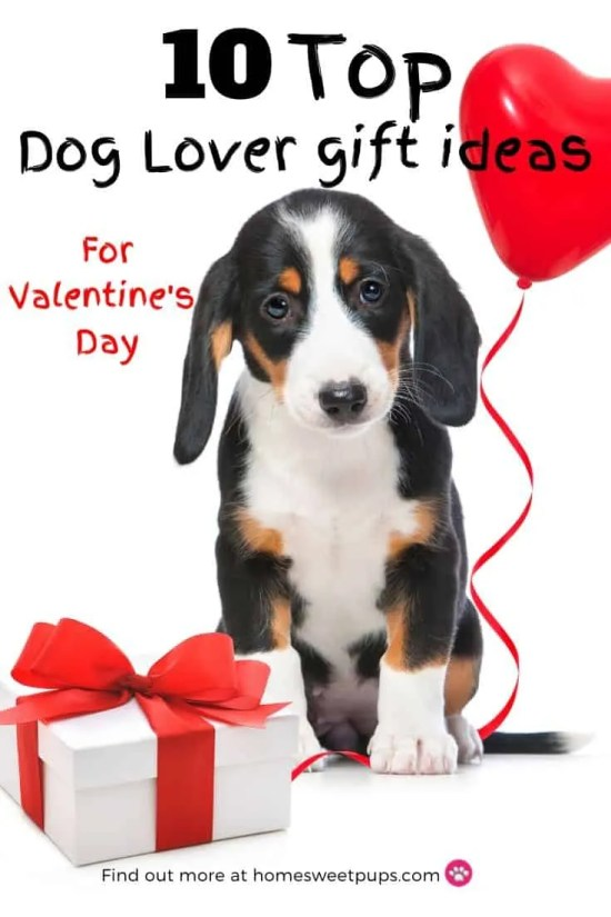 top dog lover gift ideas for valentines day