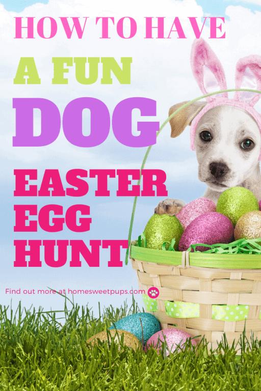 puppy in easter egg hunt basket