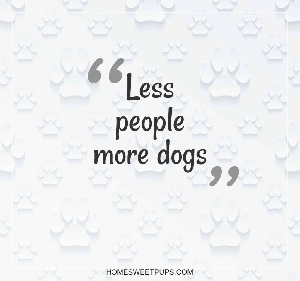 "Quote about dogs loyalty "" Less people more dogs"""