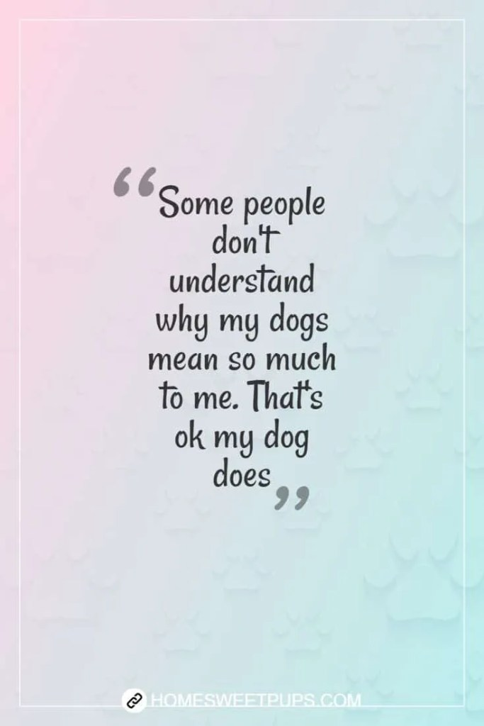"""Quote about dogs loyalty """" Some people don't understand wh my dogs mean so much to me. That's ok my dog does"""""""